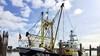 Vissersvloot in de Noordkop moet over op waterstof. Met dieselmotoren mogen ze straks niet meer in beschermde natuurgebieden van de EU komen