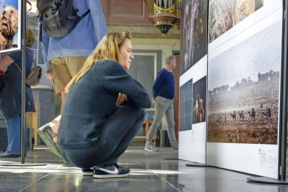 Josefien Hendriks geniet van een vakantie op Texel en de Zilveren Camera expositie.