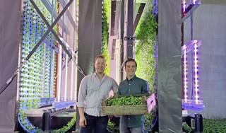 GlowFarms zijn de boeren van de toekomst met 'verticale boerderij' op Hoorn80