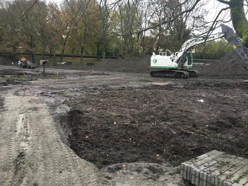 Bezwaar Enkhuizense lijkt genegeerd door gemeente bij kap in Wilhelminaplantsoen: En weg zijn de zeven bomen
