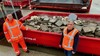 Minder West-Friezen bezorgen HVC in coronatijd meer afval