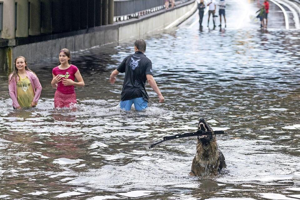 Op 18 juni was er vanwege het noodweer een waterballet in Alkmaar: in de Bergertunnel kon je zwemmen.