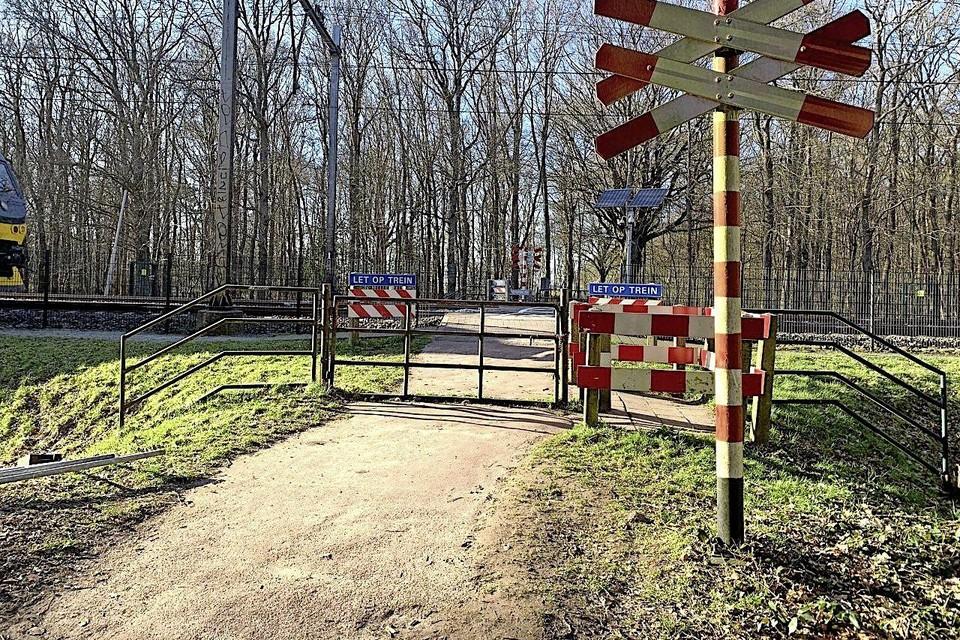 De overgang van de Stetlaan, in het verlengde van de Kraaienlaan, in het Heilooërbos. Veel wandelaars vinden dat hier een tunneltje moet komen.