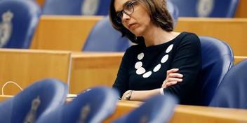 D66 en ChristenUnie willen af van subsidies biomassacentrales