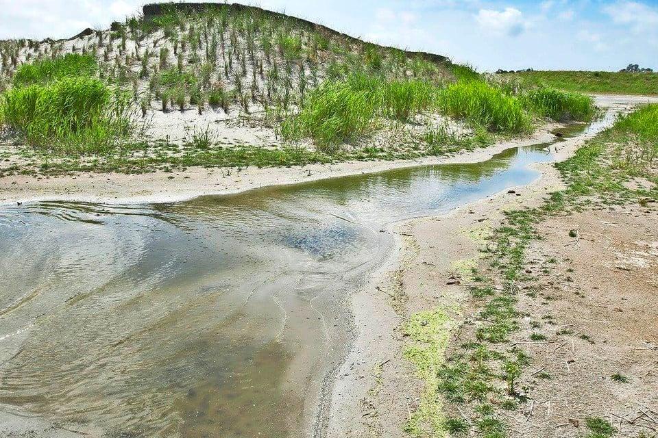 Het natuurgebied De Nollen.