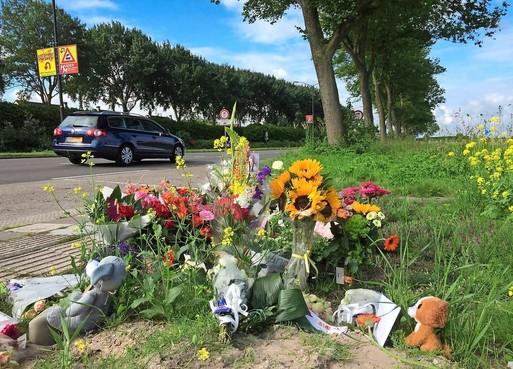 Verdachte dodelijk ongeluk Heerhugowaard krijgt rijbewijs terug: 'Ik reed 50 en had groen licht'