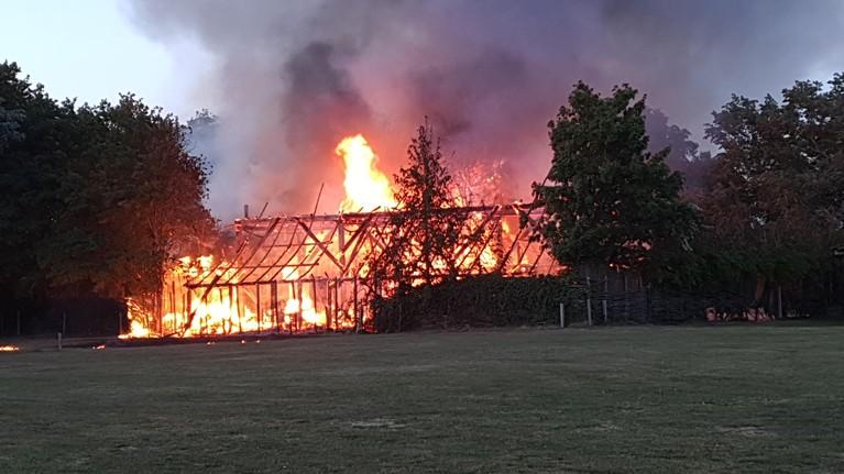 Grote brand in loodsen in Bergen [video]