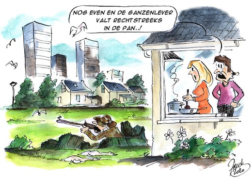 Ganzenjacht in weilanden bij Molenwijk en Heemstede doorn in het oog van buurtbewoners: 'Afschot te gek voor woorden'