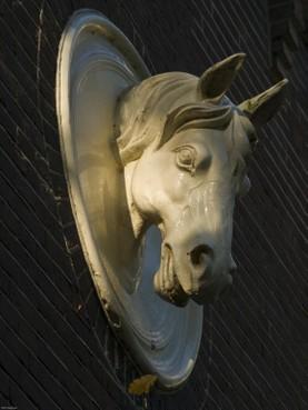 Gedwongen opname paardenmisbruiker uit Hoorn