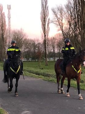 Politie gaat te paard Twiske in