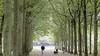 Wandelpaden in Eemland en op Utrechtse Heuvelrug worden gebundeld tot een wandelroutenetwerk van 865 kilometer
