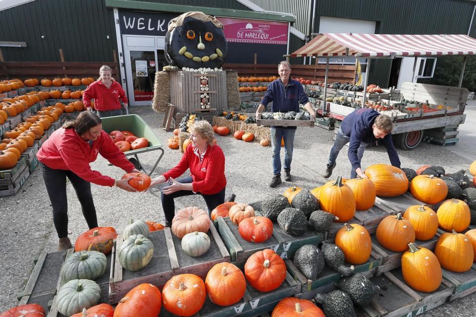 De laatste hand wordt gelegd aan de pompoen- en sfeermarkt Fair de Marlequi door (vlnr): Roxy Goudsblom, Marique, Margit, Koos en Hil Dekker.