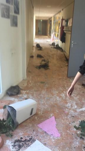 Examenstunt op Ichthus Lyceum in Driehuis loopt uit de hand: ernstige vernielingen aan klaslokalen en meubilair [video]