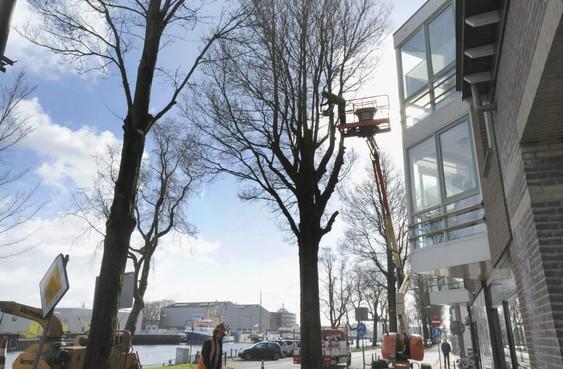 Bijna 850.000 euro voor wegwerken achterstallig onderhoud wegen, openbare verlichting en openbaar groen