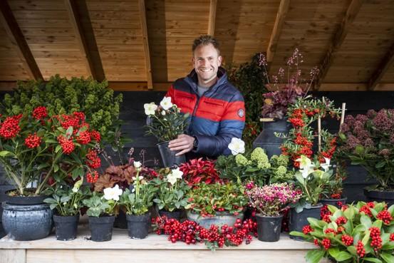 Boer Tom maakt een kleurrijk winterterras