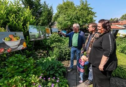 Uitgelezen dag voor zonnige blik op hobby en kunst in Enkhuizen