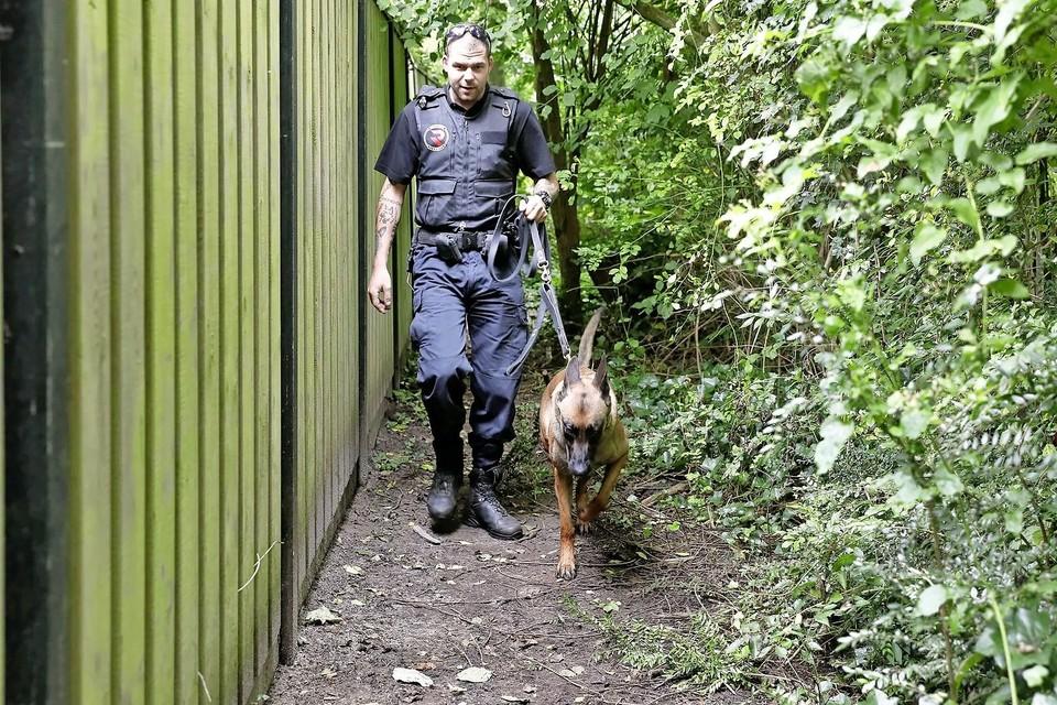 Een beveiliger met een hond probeert daklozen op te sporen in de Waldervaart.