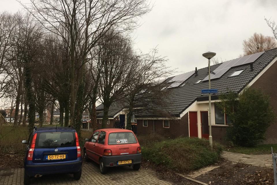 Op de Vaandersweid in Enkhuizen is een kapvergunning aangevraagd om het rendement van de zonnepanelen te vergroten.