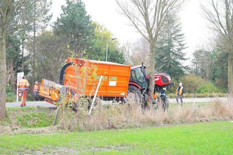 Trekker verliest van boom langs de Oosterdijk bij Dirkshorn
