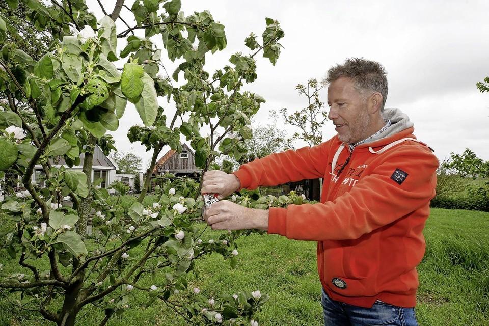 Arjen van der Veer bij een appelboom op zijn terrein.
