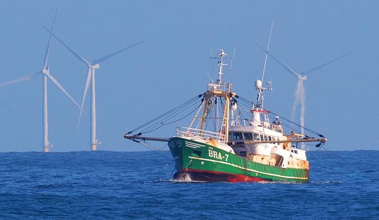 Windparken, zeereservaten en aanlandplicht bezorgen Dirk Kraak het gevoel 'dat vissers van zee worden geknikkerd'