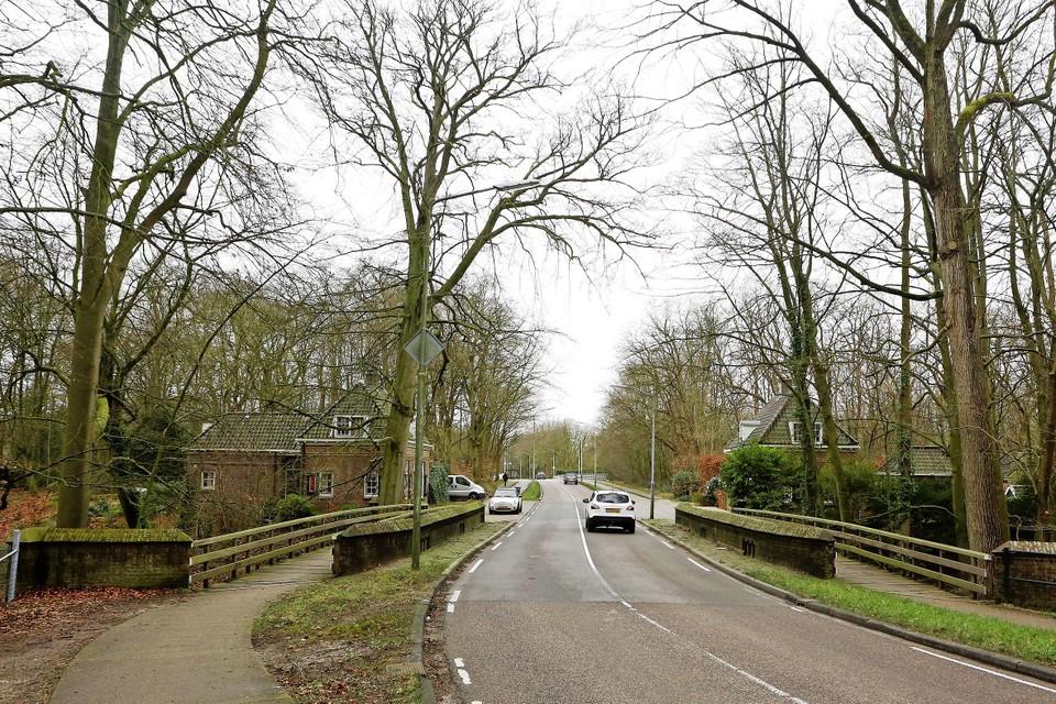 Door het hoge wegdek en de naastgelegen fietsbruggen merk je nauwelijks dat je over een monumentale boogbrug rijdt.
