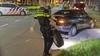 Hondje in auto veroorzaakt eenzijdig ongeluk in Haarlem, baasje voor blaastest mee naar politiebureau