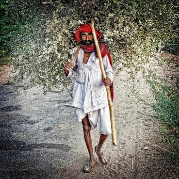 Indiase diversiteit door de lens van Gerard Rooseboom op Kunst10Daagse Bergen