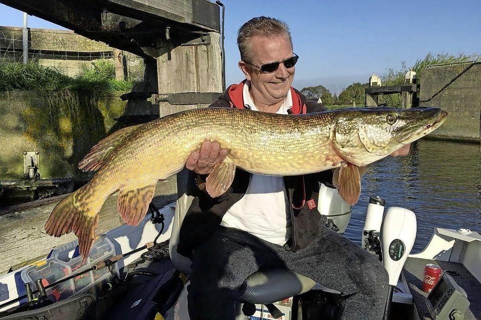Gerrit Ritman met een kloeke vangst die hij direct weer in het water laat glijden.
