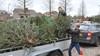 Jeugd Uitgeest verdient bij met ophalen kerstbomen