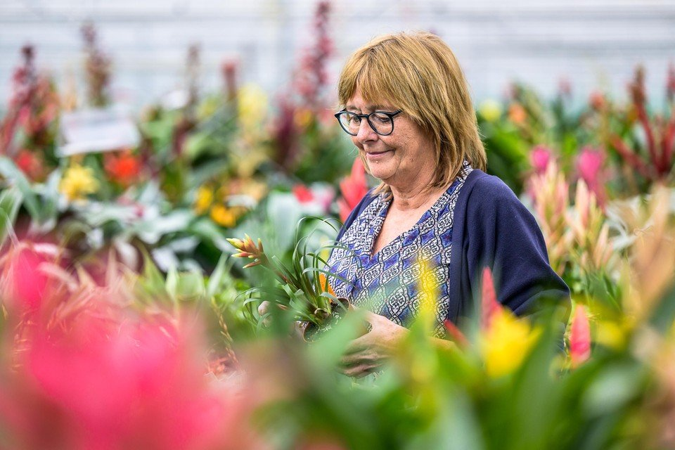 Elly Bak maakt zich zorgen om de stijgende gasprijzen. De kostprijs van haar planten en bloemen gaat dan ook omhoog.