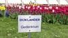 Bloeiende Gedenktuin bij Dijklander Ziekenhuis krijgt nieuw aanblik met vlinderbloemenzaad
