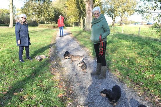 Hondentax afgeschaft in Castricum en Uitgeest