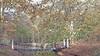 Petitie tegen muziekevenement in 2023 op Overveens landgoed Elswout