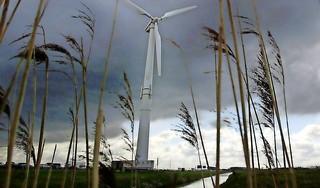 Zaanstad maakt zich op voor juridisch knokpartijtje met Amsterdam over windmolens