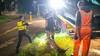 Drankrijder aangehouden na botsing tegen boom in Aerdenhout
