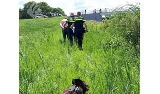 Betrapte autodief vlucht het bos in bij Lutjewinkel, politiehond spoort hem op en bijt