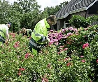 Hollands Kroon zet snippergroen in etalage