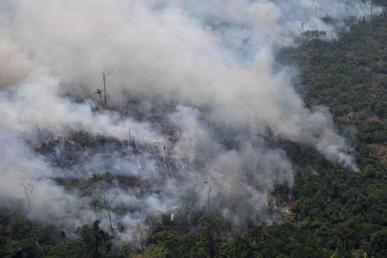 Commentaar: Europa moet voor het Amazonegebied in de bres springen en Bolsonaro stoppen