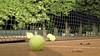 Griekspoor naar kwartfinales Dutch Open