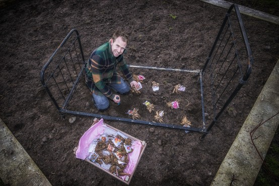 Boer Tom maakt een bloembed vol dahlia's