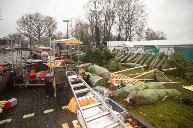 Baarnse kerstboomverkopers met beperking laten zich niet door windhoos uit het veld slaan