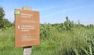 Natuurgebied de Groote Vliet krijgt er tien hectare bos bij. 'Zo wordt het nog aantrekkelijker voor dieren, planten en mensen'