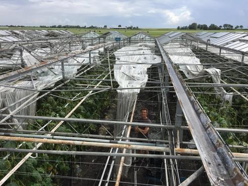 Schade-experts draaien overuren door stormschade
