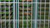 Het beleid van Hollands Kroon over datacenters rammelt | Opinie