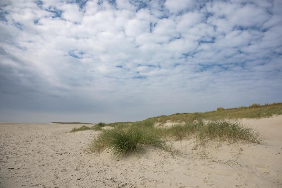 De Hors op Texel.