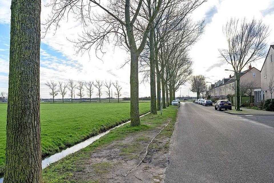 De bewoners aan de Sabine van Beierenlaan in Egmond aan den Hoef kijken nu nog uit over een weiland, waar in de toekomst mogelijk huizen worden gebouwd.