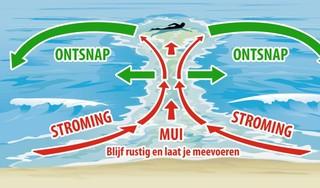 Muien maken zwemmen in Egmond aan Zee 'extreem gevaarlijk': de reddingsbrigade is in opperste paraatheid [video]