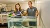 Palingkwekerij Glasaal Volendam hoopt in Edam het juiste voer voor babypaling te vinden; Voorzitter Carlo Binken: 'Larven blijven tot nu toe niet in leven' [video]