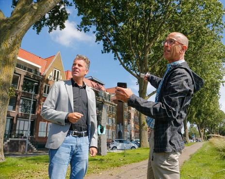 Laatste woord over herplant bomen aan Hoornse Westerdijk blijft bij Alliantie Markermeerdijken